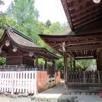 徳川家康の家紋 三つ葉葵はどんな意味を持つ紋所なのか?