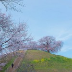 日本で初めて火葬された天皇 持統天皇 その埋葬の経緯とは
